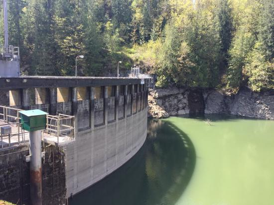 concrete circular structure next to a body of greenish water and trees